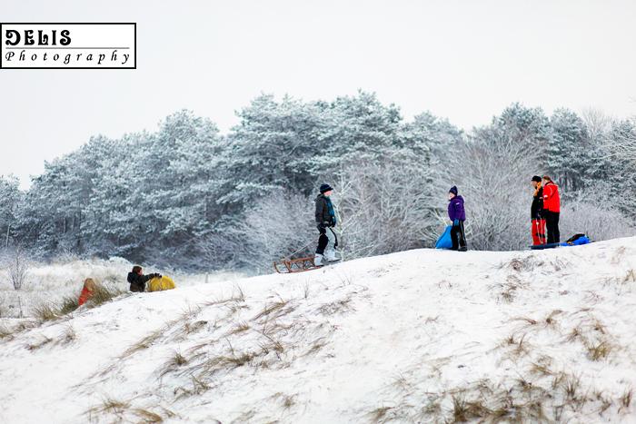 Winter-243