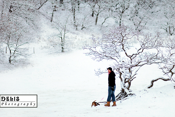 Winter-084