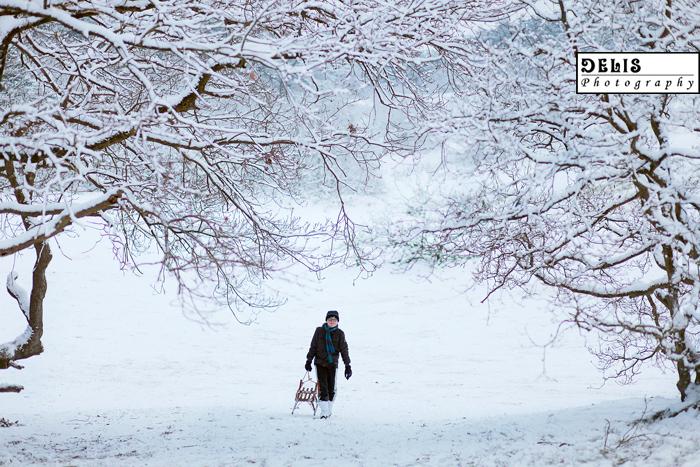 Winter-120